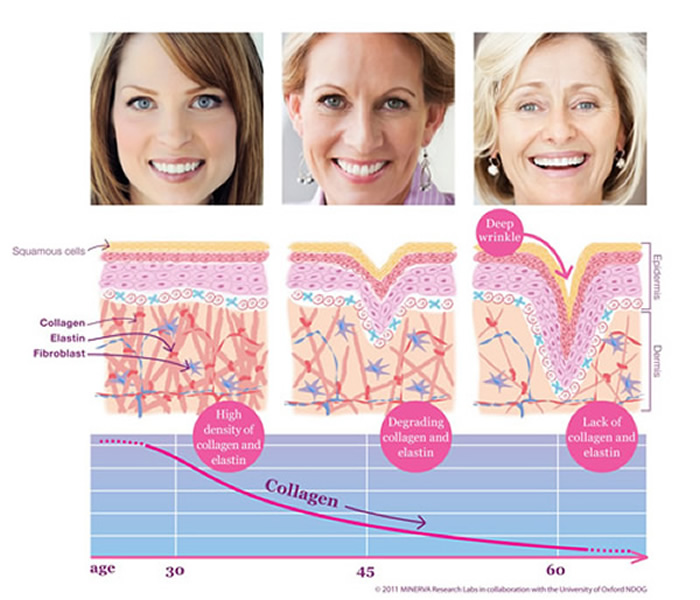 Skin aging demostrated across three generations: young, middle age, and old